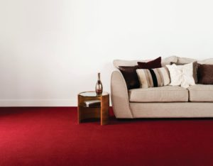 Carpet Cleaning at Qualitas Carpet Cleaning